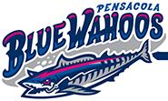 Blue Wahoos Stadium